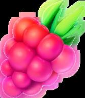 pokemongo-razzberry
